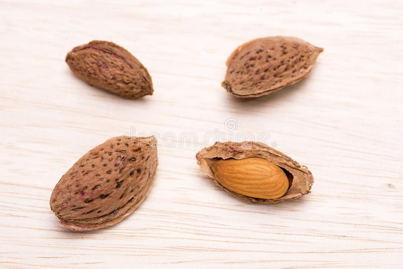 Almond hard shell. And kernel on a wooden table stock photos