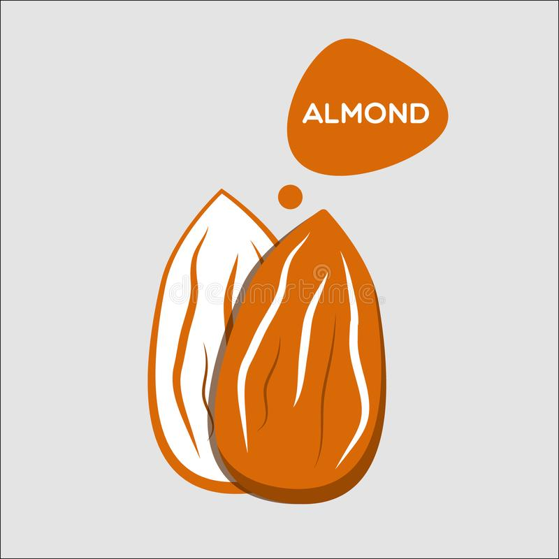 Almond nut icon. Simple brown vector almond vector illustration