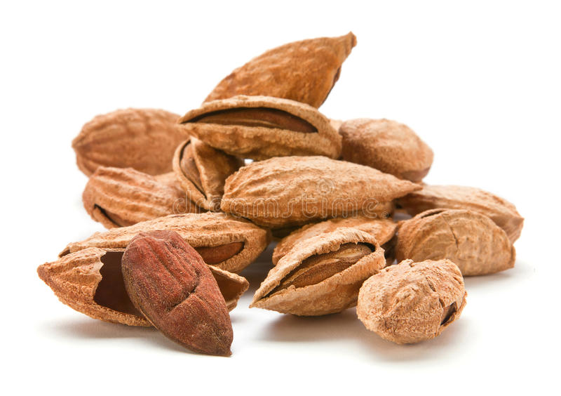 Almond nut with shell royalty free stock photography