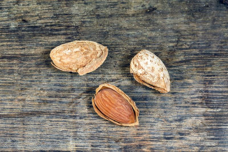Almond nut in shell on rustic wood royalty free stock photo