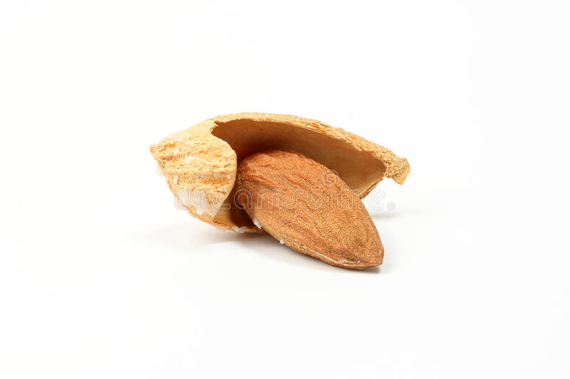 Almond nut in shell royalty free stock photo