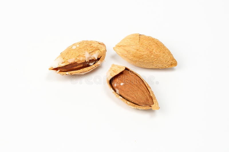 Almond nut in shell royalty free stock image
