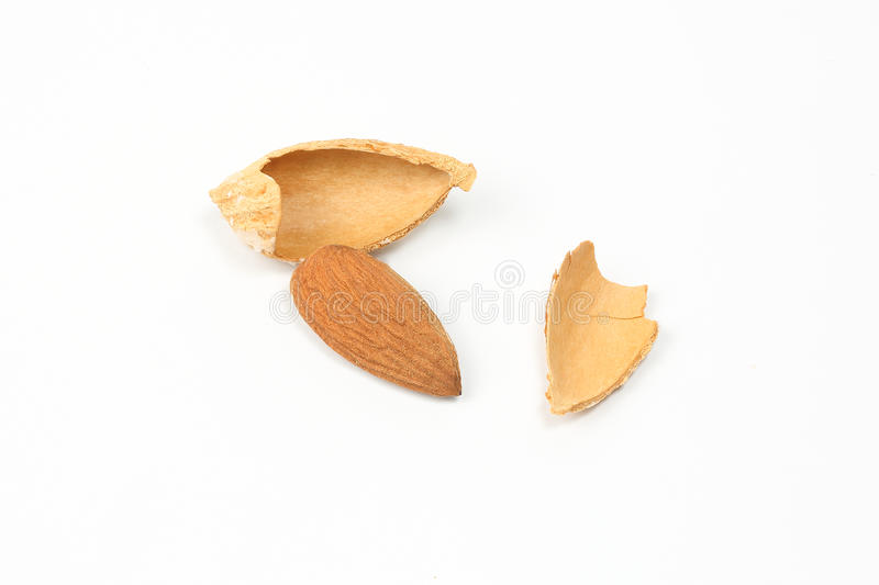 Almond nut in shell stock images