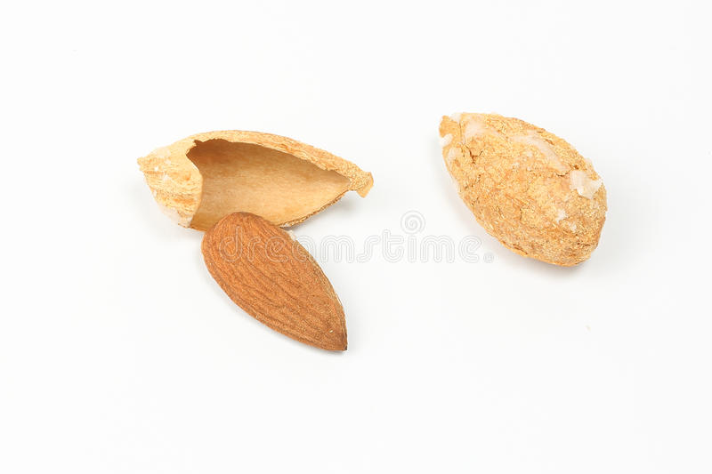 Almond nut in shell stock photo