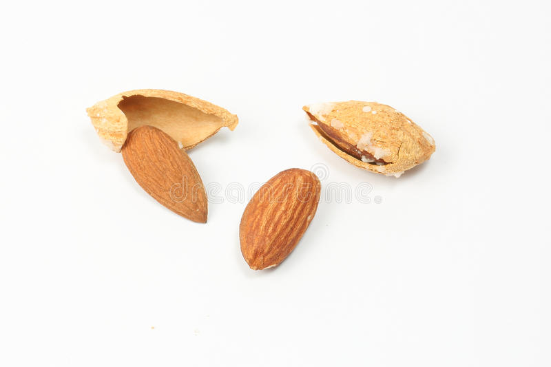 Almond nut in shell royalty free stock photography