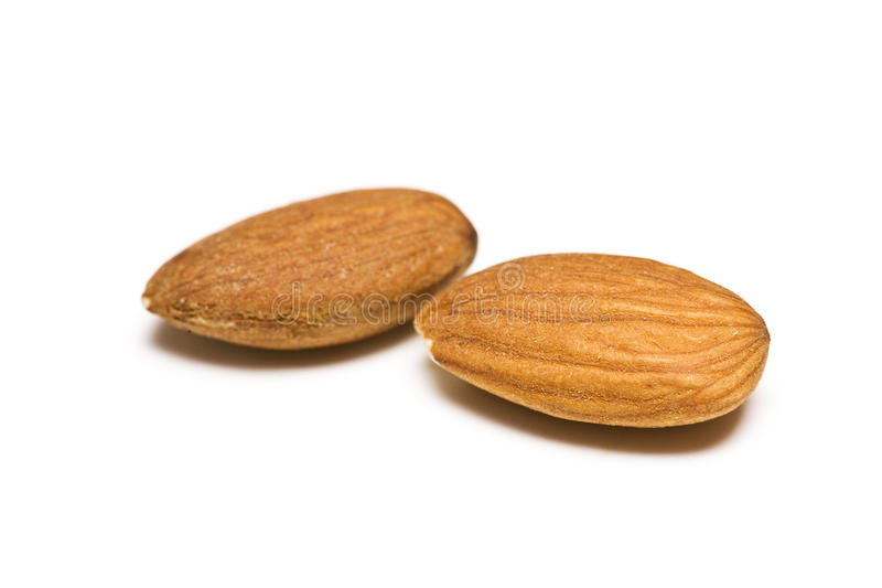 Download Almond nuts stock photo. Image of isolated, brown, background - 13894868