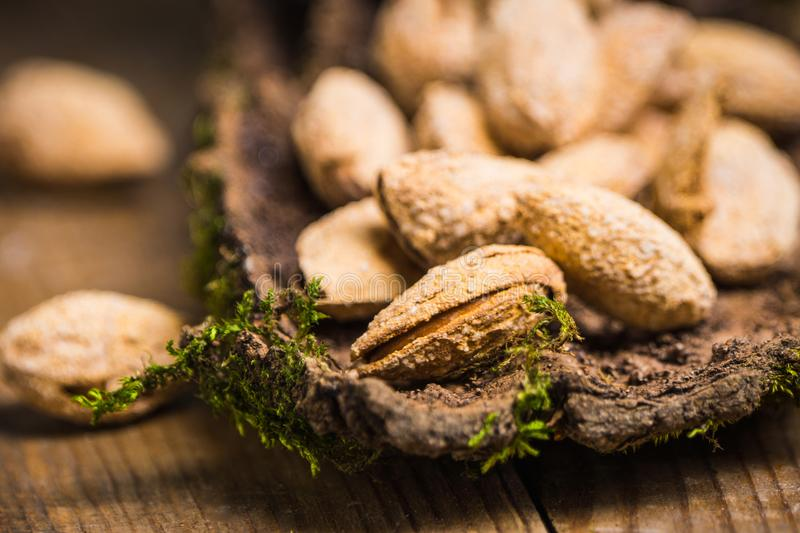 Almond nuts on the bark. Selective focus royalty free stock photo