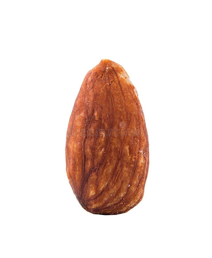 Almond on white background royalty free stock photos