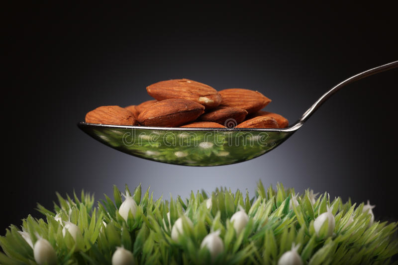 Almonds. Spoon of almonds over green grass royalty free stock photos