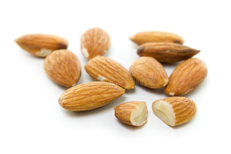 Download Almonds stock photo. Image of macro, almonds, studio - 13728902