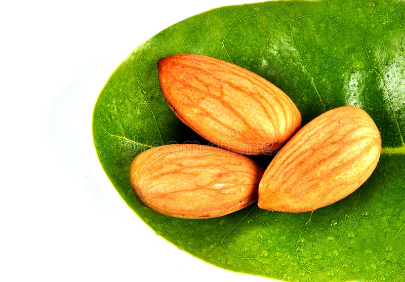 Almonds. On the leaf with isolated background royalty free stock photos