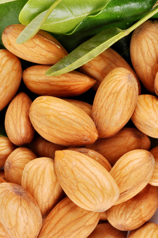 Almonds. On the leaf with background royalty free stock images