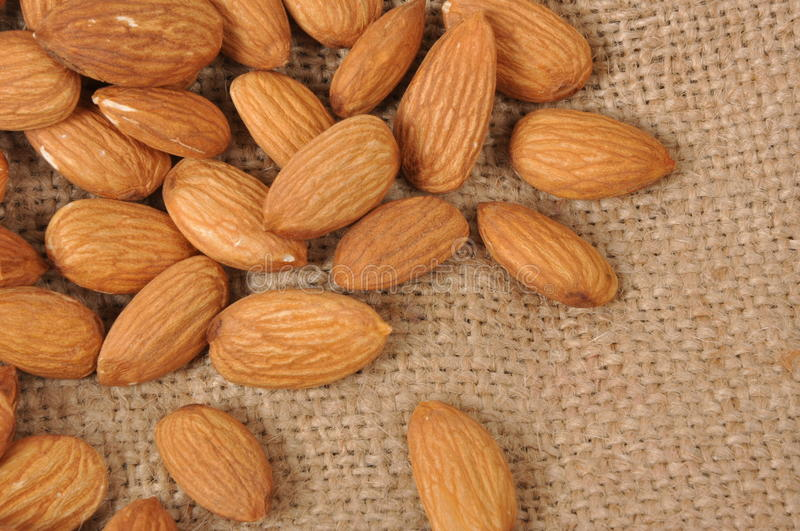 Download Almonds stock image. Image of macro, good, feed, hulled - 25605231