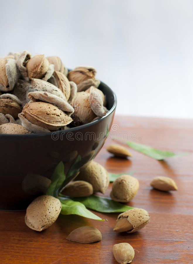 Download Almonds stock image. Image of seed, green, food, almond - 26686599