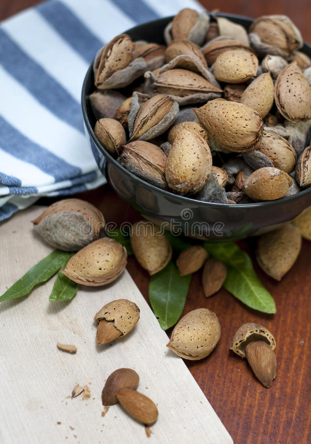 Download Almonds stock photo. Image of ingredient, kernel, organic - 26686616