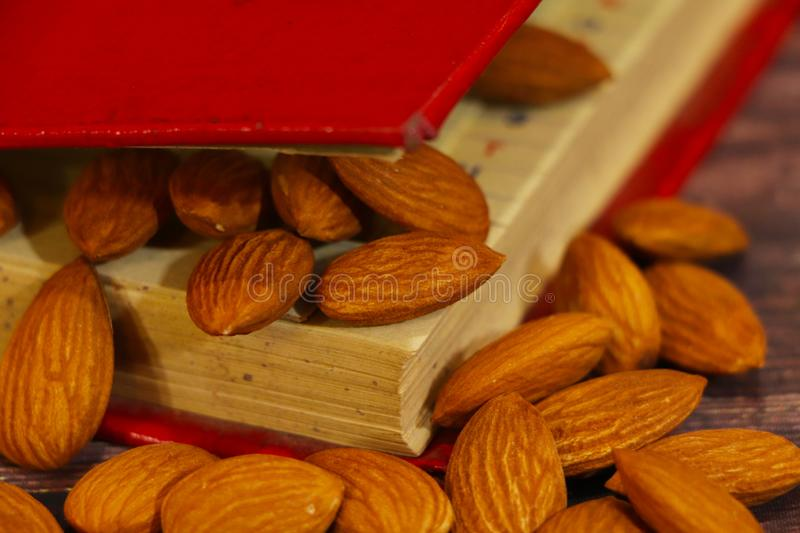 Almonds, almond group, almonds in red book. Natural, food. Front view royalty free stock photo