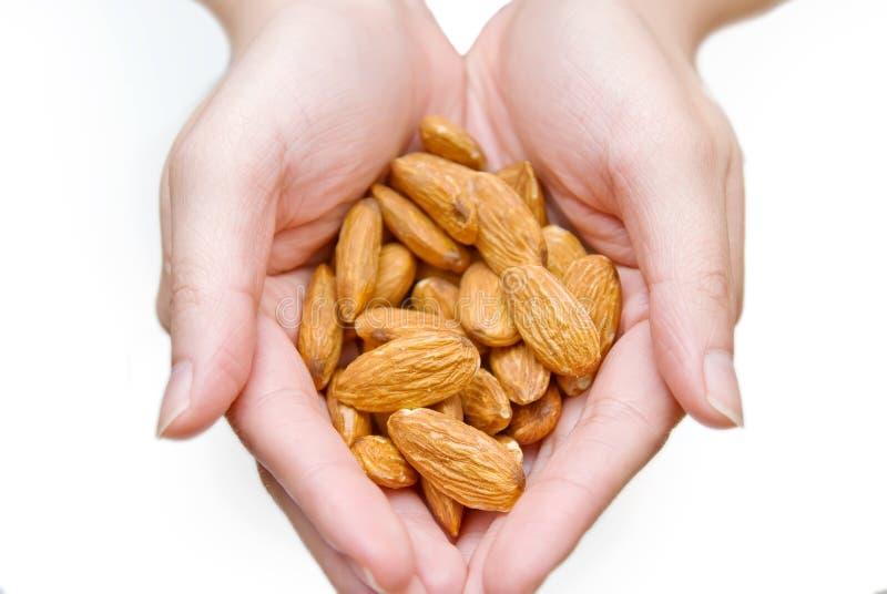 Almonds In Hands Stock Photos