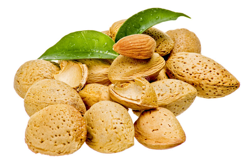 Download Almonds with kernel stock photo. Image of ingredient - 16791576