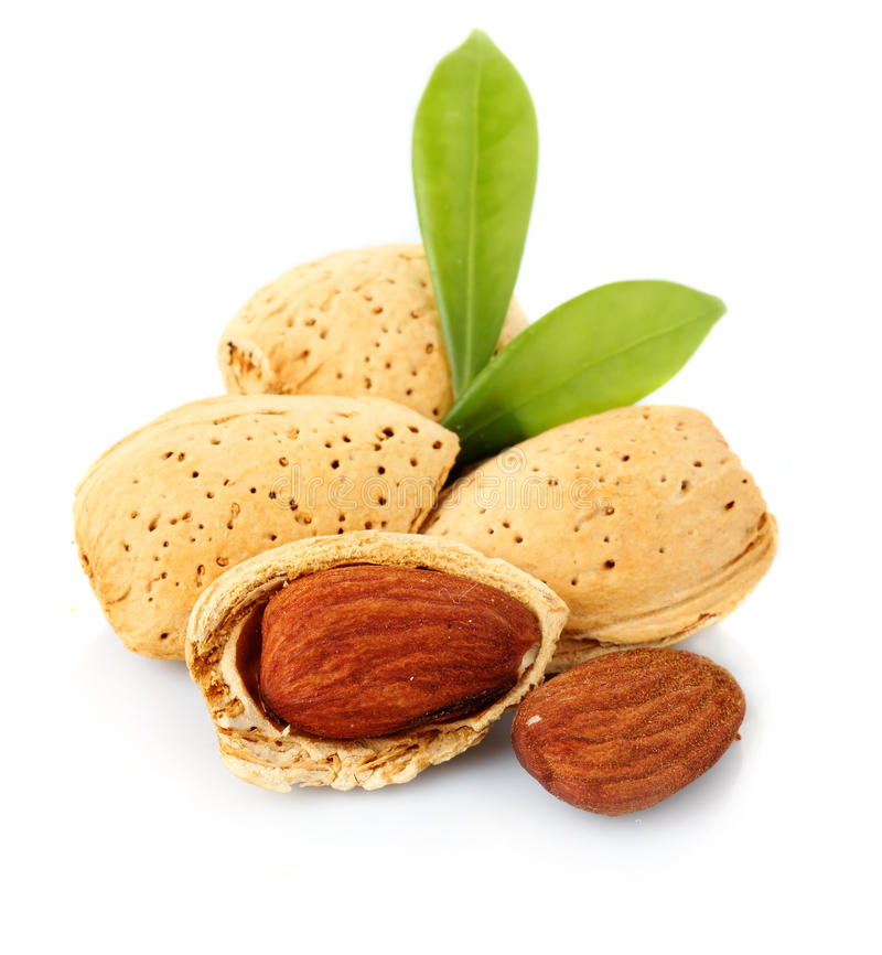 Almonds with kernels on white stock photos