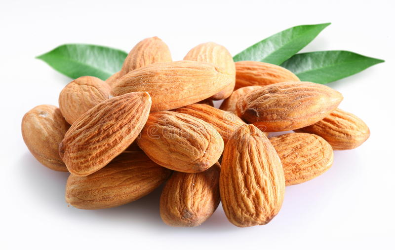 Almonds with leaves. stock images