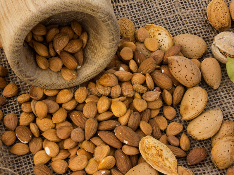 Almonds in a mortar stock photography
