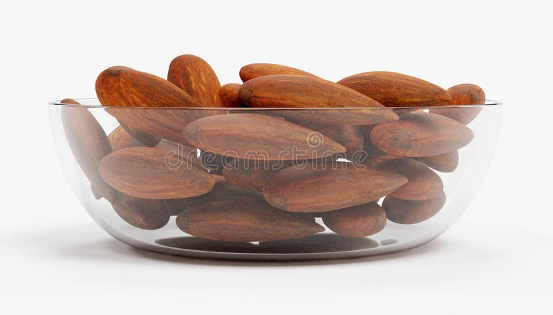 Almonds. Realistic 3D Render of Almonds royalty free illustration