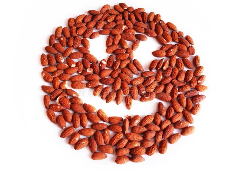 Almonds smile royalty free stock image