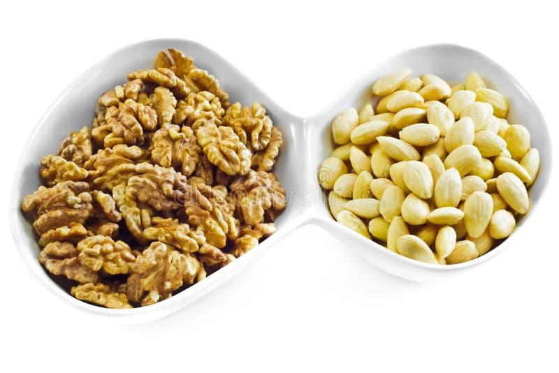 Almonds and Walnuts stock photo