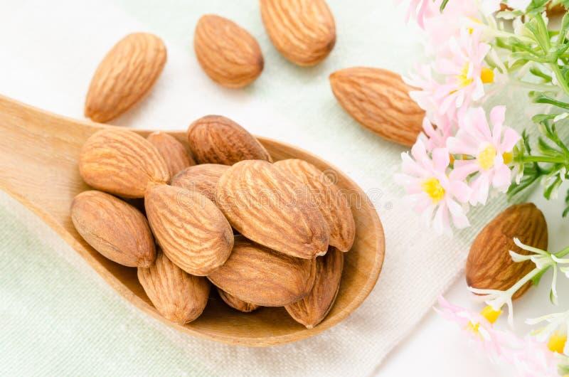 Almonds. stock photos