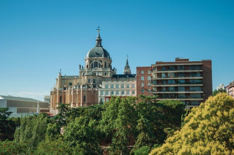 Almudena Cathedral Dome parmi des arbres et des logements à Madrid photo libre de droits