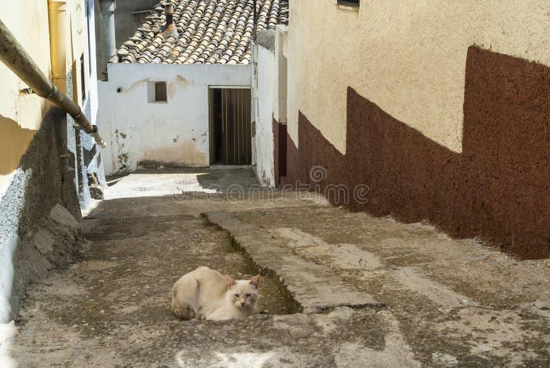 Almudevar (阿拉贡,西班牙) 库存图片