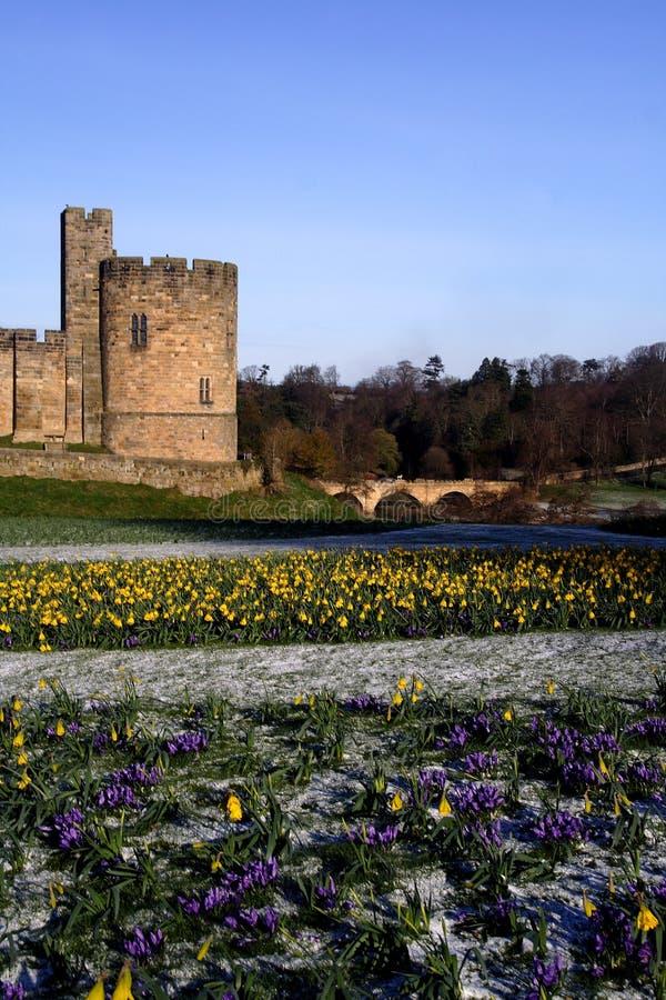 Free Alnwick Castle Stock Photos - 2129403