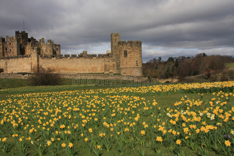 Download Alnwick castle stock photo. Image of medieval, duke, bulb - 4779432