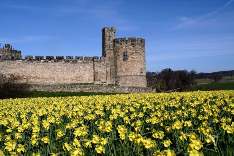 alnwick slott royaltyfri foto