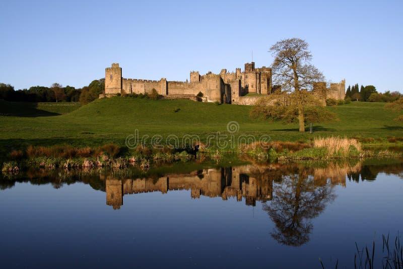 alnwick slott fotografering för bildbyråer