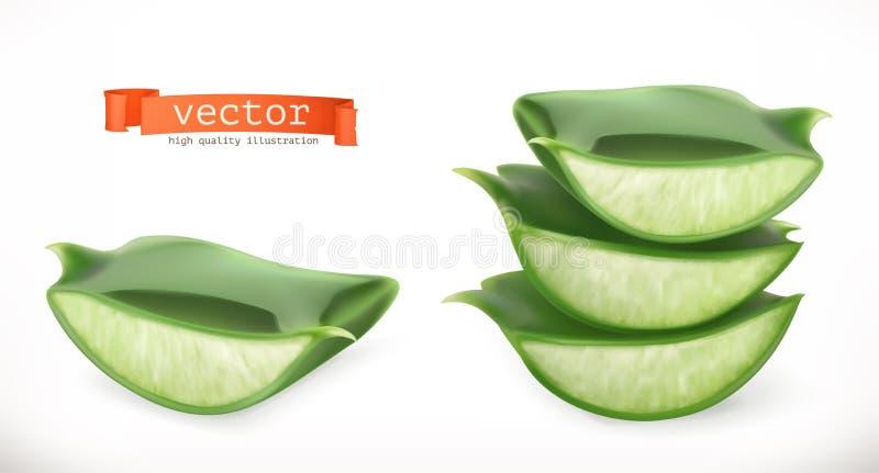 Aloès vera Icône de vecteur de plante médicinale illustration stock