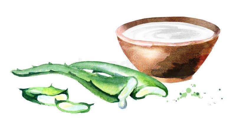 Aloés orgânico vera e iogurte Ilustração da aguarela ilustração do vetor