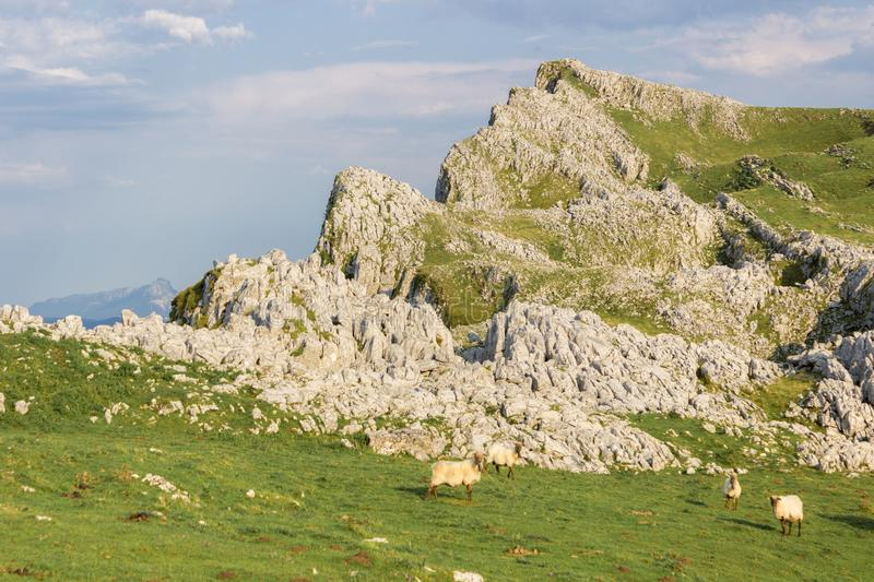 Aloña mountain in Oñati. In the Basque Country in Spain stock images