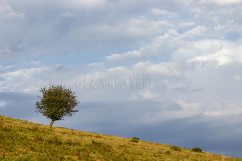 Aloña mountain in Oñati. In the Basque Country in Spain royalty free stock images