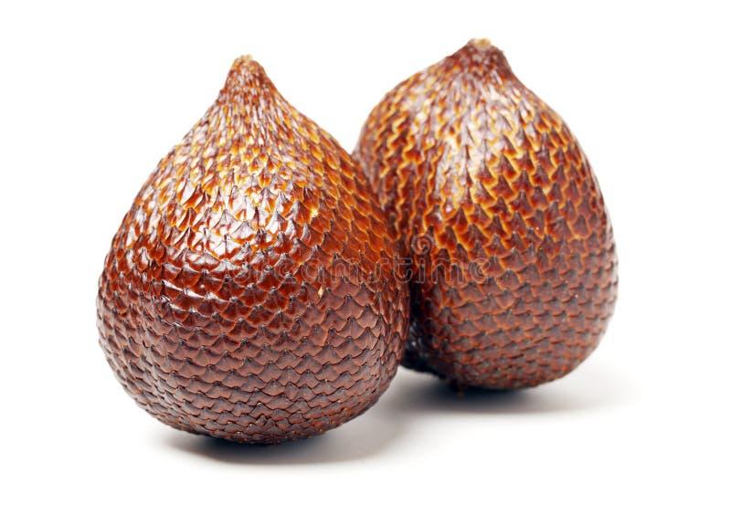 Alocal frukt som är infödd i indonesia och Malaysia som någon gång är bekanta som ormfrukter royaltyfria bilder