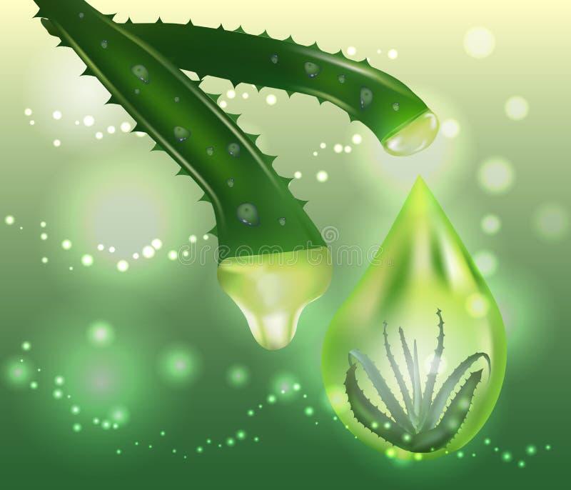 Aloe η κρέμα και ο ψεκασμός της Βέρα με το ράντισμα του υγρού μέσω των φύλλων στο bokeh ακτινοβολούν διανυσματική απεικόνιση