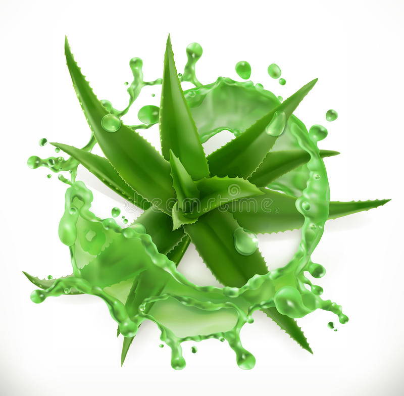 Aloe χυμός, υγεία και προσοχή διανυσματικό εικονίδιο δ διανυσματική απεικόνιση
