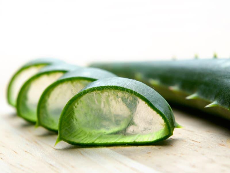 Aloe cut stock image