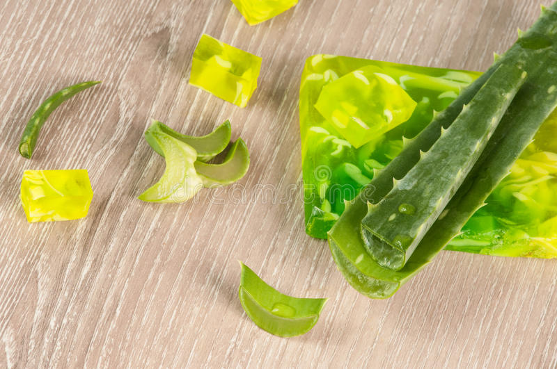 Aloe. Leaves of aloe vera, cut and hand soap with aloe legal stock image