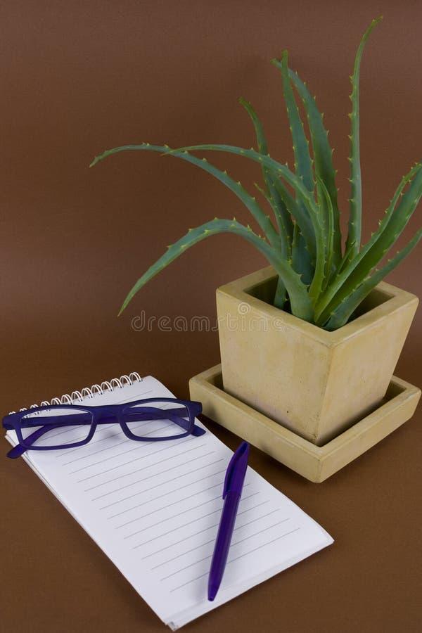 aloe succulent εγκαταστάσεις της Βέρα σε σε δοχείο στο συγκεκριμένο δοχείο, τα γυαλιά, τη μάνδρα και το ανοιγμένο σημειωματάριο μ στοκ εικόνα
