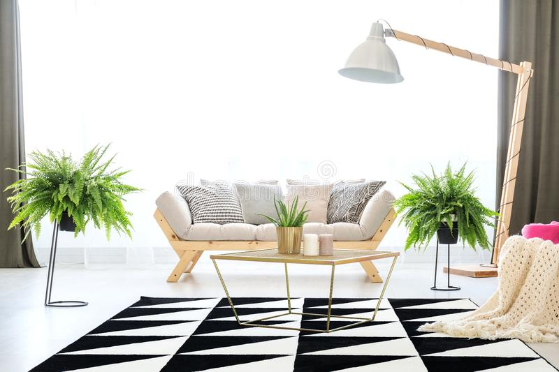 Sofa in apartment with ferns stock photos