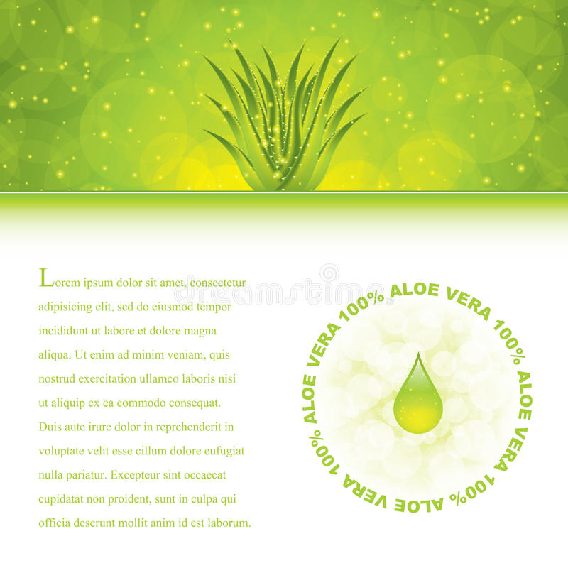 Download Aloe Vera stock vector. Image of herb, aloe, leaf, cure - 24318255