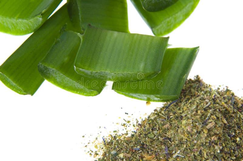 Aloe Vera - alternative Therapie lizenzfreies stockfoto