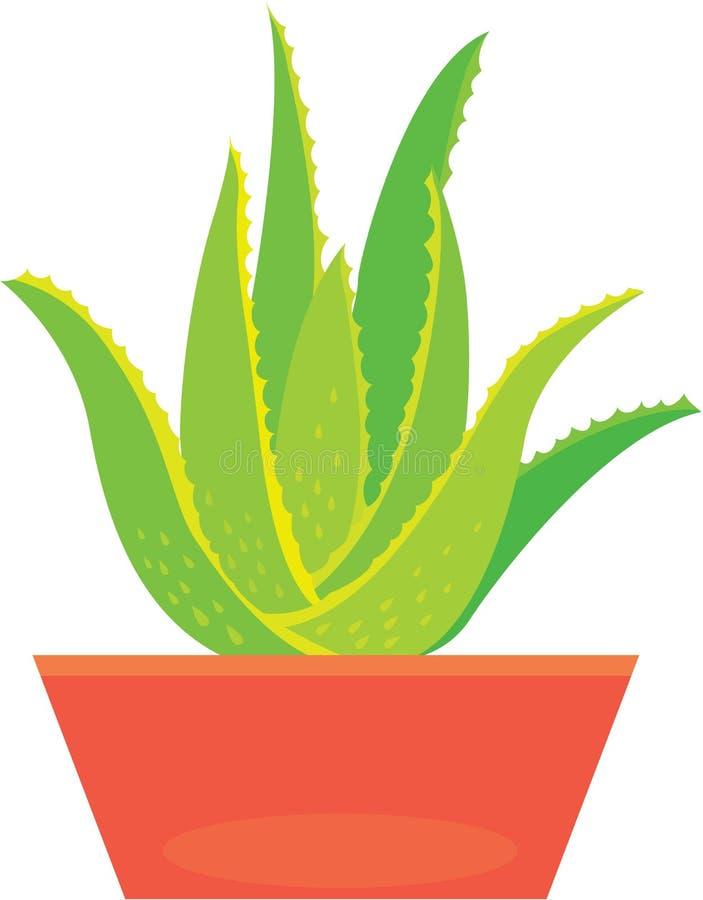 Aloe Vera-Anlage vektor abbildung