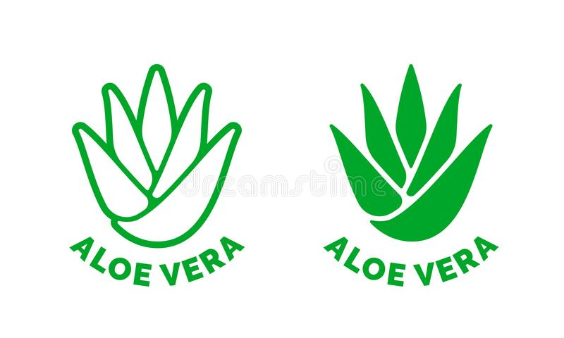 Aloe-Vera-Aufklebergrünblatt-Vektorikone vektor abbildung